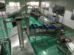 Different Sized Fresh Potato-Chips Processing Machinery pictures & photos