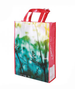 PP Non Woven Promotion Bags