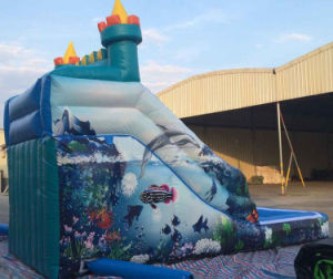 Summer Inflatable Water Slide for Personal Used or Commercial Used pictures & photos