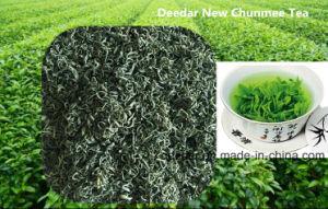 Fresh Chunmee Tea pictures & photos