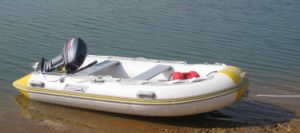 3.6m Rigid Hull Fiberglass Inflatable Boat for Sale pictures & photos
