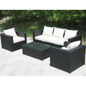 Modern Wicker Sofa Set with Multi-Functions (WS-06015) pictures & photos