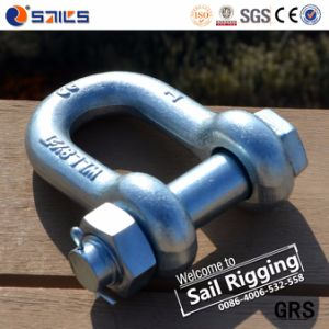 Us Type Bolt Galvanized Lifting Chain Dee Shackle pictures & photos