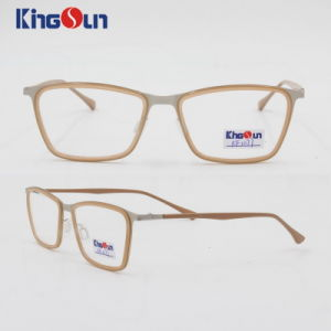 Fashion Tr90 and Metal Mix Frame Acetate Temple Optical pictures & photos