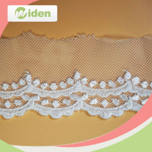 Professional QC Team Fancy Pattern Net Embroidery Lace for Sale pictures & photos