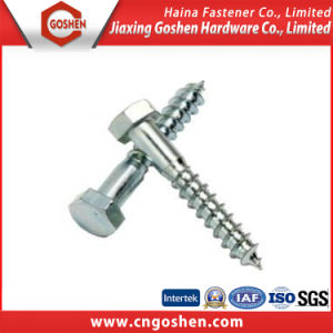 Hex Head Wood Screw/Hex Wood Screw/ Wood Screw/Lag Screw DIN571 pictures & photos