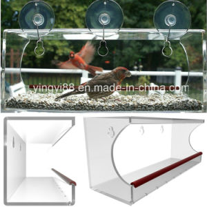 Super Quality Acrylic Wild Bird Feeder with Drain Holes &Strong Suction Cup pictures & photos