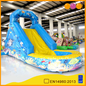 Beautiful Aquarium Inflatable Water Slide (AQ1249-1) pictures & photos