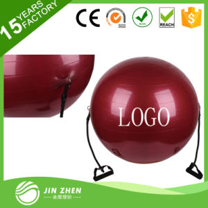 65cm Gym Exercise Yoga Fitness Ball with Rubber Rope