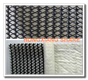 Double-Sides Coated Geotextile Drainage Net pictures & photos
