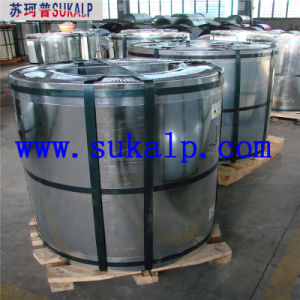 High Quality Galvanized Iron Coil pictures & photos
