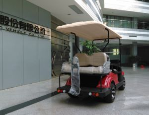 Dongfeng Electric Golf Car for 2 People (EQ9022) pictures & photos