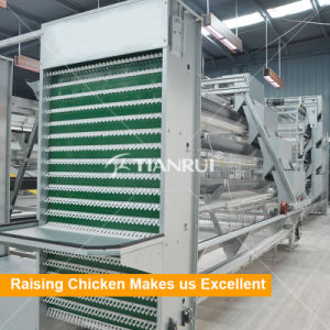 Design Galvanized Battery Layer Chicken Cages for Poultry Farm pictures & photos