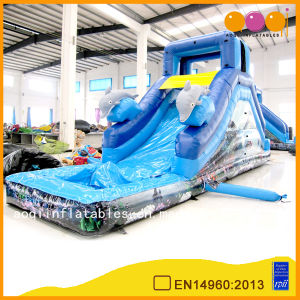 Dolphin Infltable Water Slide with Pool (AQ1079) pictures & photos