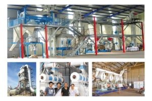 Stainless Steel Biomass Pellet Briquetting Machine pictures & photos
