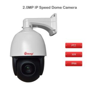 Onvif Auto Focus IP66 Waterproof IR IP Camera