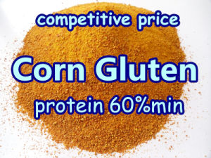 Non-Gmo Corn Gluten for Animal pictures & photos