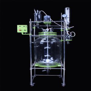 Jacketed Glass Reactor (EX-HEB-100) pictures & photos