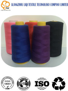 Factory Core Spun Polyester Sewing Thread 40/2 pictures & photos