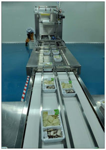Hot Sale in Thailand Map Packaging Machine pictures & photos