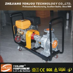 Diesel Oil Transfer Pump (LQRY) pictures & photos