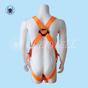 Full Body Harness, Safety Harness, Seat Belt, Safety Belt, Webbing with Three-Point Fixed Mode (EW 0100BH) pictures & photos