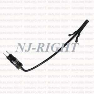 Delphi Fuel Injector/Injection/Nozzel for Chevrolet (FJ10039) pictures & photos