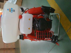 Solo Port 423 Spare Parts for Power Sprayer pictures & photos