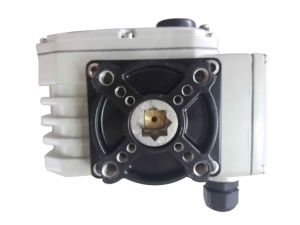 Dcl 110V Electric Control Actuator with Valve pictures & photos