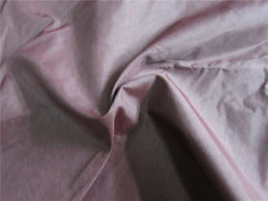20d Nylon Taffeta Fabric for Down Coat (XSN004) pictures & photos