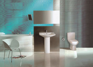 Ceramic Sanitary Ware with Basin and Toilet pictures & photos