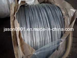 ASTM A-475 Galvanized Steel Cable pictures & photos