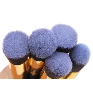 10 PCS Professional Portable Cosmetic Tool Makeup Brush pictures & photos