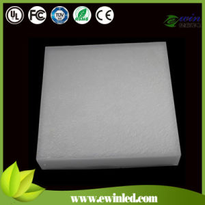 Automatic Color Outdoor LED Paver with Waterproof