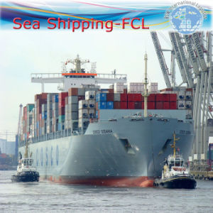 International Freight, Shipping Container, Sea Shipment Service (FCL 20′′40′′) pictures & photos