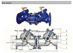 Double Y Type Backflow Preventer pictures & photos