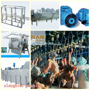 Customized Livestock Machines with House Construction with High Quality pictures & photos