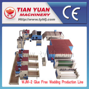 Wjm-2 Nonwoven Machines, Glue Free Wadding Production Line pictures & photos
