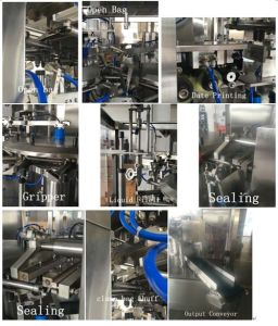 Liquid and Paste Packing Machine (Double Filling) pictures & photos