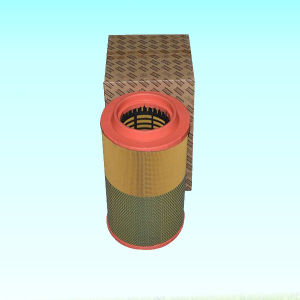 OEM All Kinds High Quality Air Filter pictures & photos
