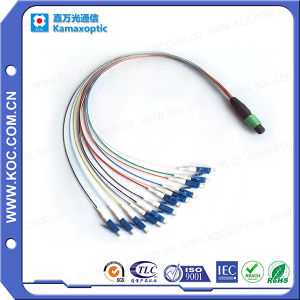 MPO-LC Fanout 12core Fiber Optical Patchcord pictures & photos