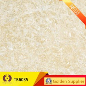 Building Material Marble Stone Polished Porcelain Flooring Tile (TB6035) pictures & photos