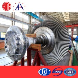 Coal Fired Power Plant Condensing Steam Turbine pictures & photos