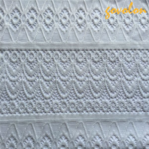 New White Stretch Lace Fabric pictures & photos