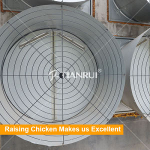 50 Inch Wall Mounted Exhaust Fan for Poultry Farm pictures & photos