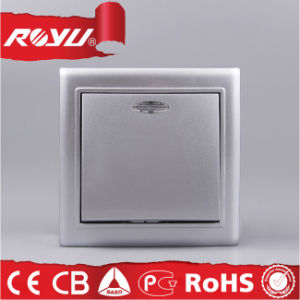 CE Certificate PC Material Silver Painted Electric Switch pictures & photos