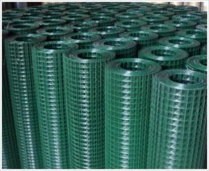 Galvanized Welded Wire Mesh for Chicken, Rabbit, Animal Cage pictures & photos
