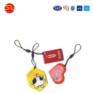 Sunlanrfid Irregular Shape Nfc Epoxy Smart Card pictures & photos