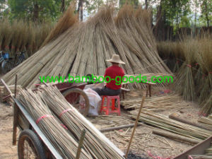 Tonkin Bamboo Cane for Mat pictures & photos
