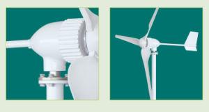 600W 800W 1kw 2kw 3kw 5kw 10kw Wind Generators/Wind Power Generator pictures & photos